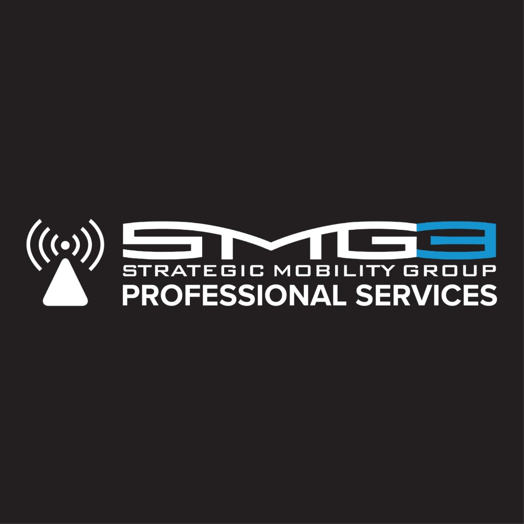 SMG3 Professional Services